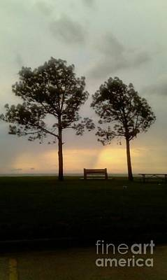 Photograph - Sunset Bench  by Michael Hoard