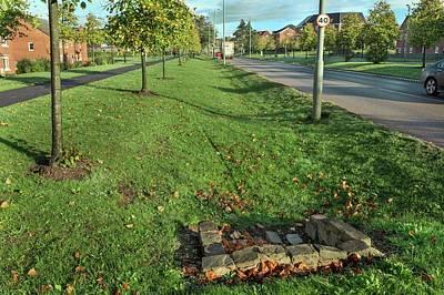 Sustainable Urban Drainage System Art Print