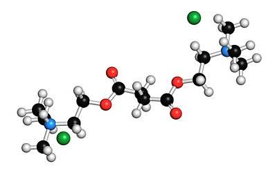 Suxamethonium Chloride Molecule Art Print by Molekuul