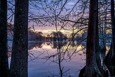 Photograph - Swamp Sunrise by David Morefield