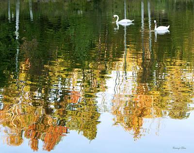 Furman Photograph - Swan Lake by Nian Chen