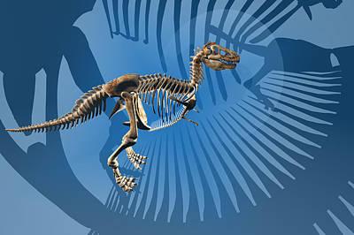 Tyrannosaurus Rex Digital Art - T. Rex Dinosaur Skeleton by Carol and Mike Werner