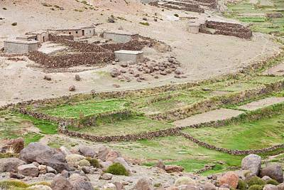 Terracing Photograph - Terraced Fields by Ashley Cooper