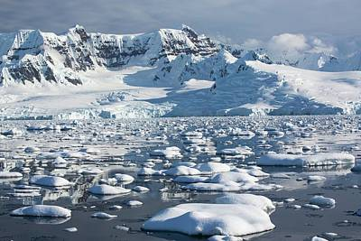 Brash Photograph - The Gerlache Strait by Ashley Cooper