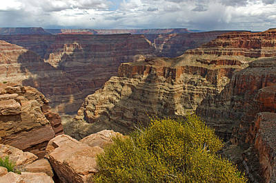 Photograph - The Grand Canyon by Willie Harper