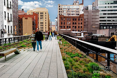 Manhattan Photograph - The High Line Urban Park New York Citiy by Amy Cicconi