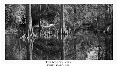 The Low Country Art Print