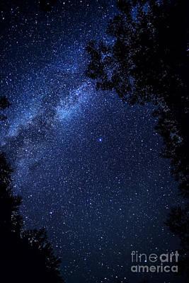 The Milky Way Over Cranberry Wilderness Art Print