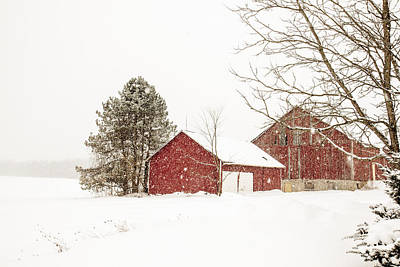 Barns In Snow Photograph - The Red Barn by Nick Mares