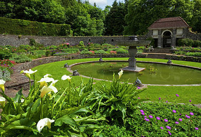 Arum Lily Photograph - The Sunken Garden With Circular by Panoramic Images