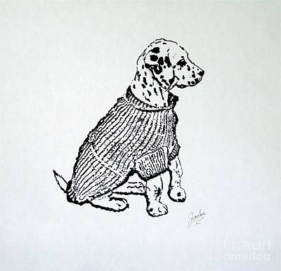 Dalmation Drawing - The Sweater Girl by Jacki McGovern