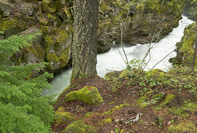 The Upper Rogue River Flows Art Print