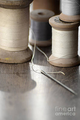 Photograph - Thread And Needle by Jill Battaglia