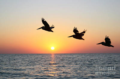 Sunset Photograph - Three by Irina Davis