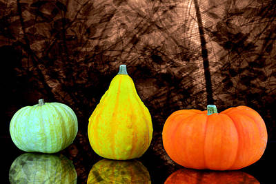 Three Small Pumpkins  Art Print by Tommytechno Sweden