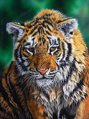 Wall Art - Painting - Tiger Cub by Julian Wheat