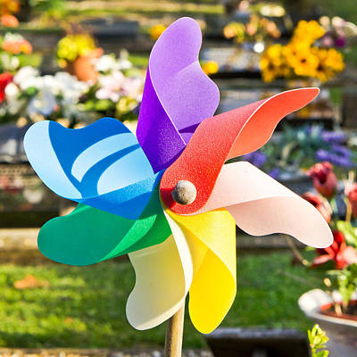 Pinwheel Photograph - Toy Windmill by Tom Gowanlock