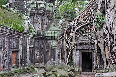 Tree Roots On Ruins At Angkor Wat Art Print by Sami Sarkis