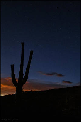 Photograph - Tucson Sunset by Erika Fawcett