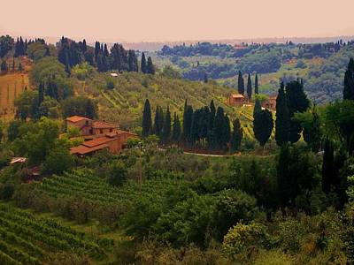 Photograph - Tuscan Landscape by Dany Lison