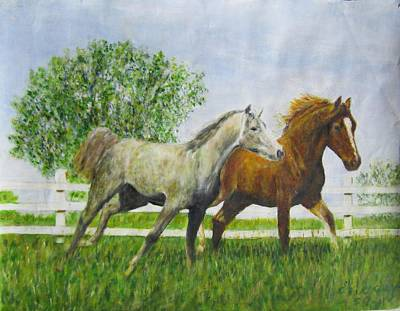 Two Horses Running By White Picket Fence Art Print