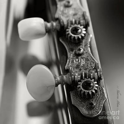 Photograph - Ukulele by Sharon Mau
