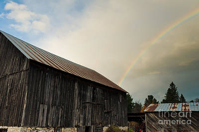 Photograph - Under The Rainbow by Cheryl Baxter