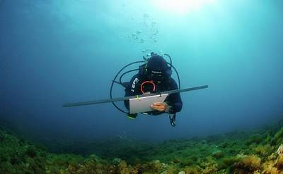 Scuba Diving Photograph - Underwater Survey by Photostock-israel