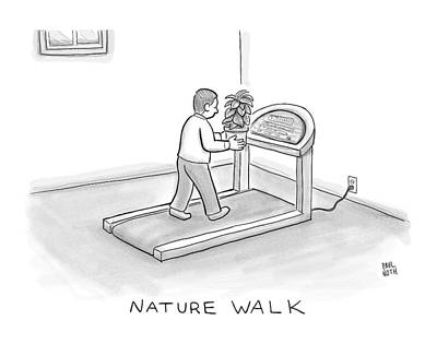 Potted Drawing - New Yorker November 7th, 2016 by Paul Noth