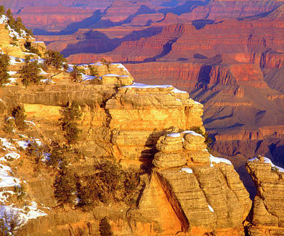 Petrified Forest Arizona Photograph - Usa, Arizona, Grand Canyon National by Jaynes Gallery