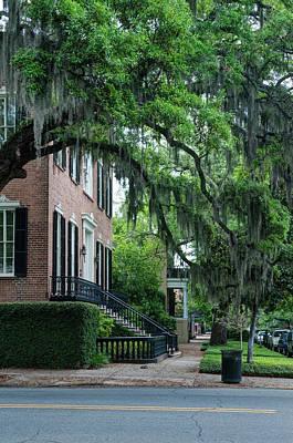 Savannah Live Oaks Photograph - Usa, Ga, Savannah, Historic District by Rob Tilley