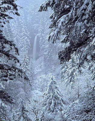 Snow-covered Landscape Photograph - Usa, Oregon, Silver Falls State Park by Jaynes Gallery