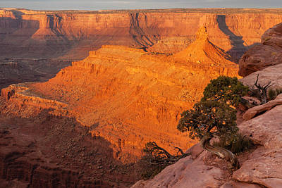 Usa, Utah, Dead Horse Point State Park Print by Jaynes Gallery