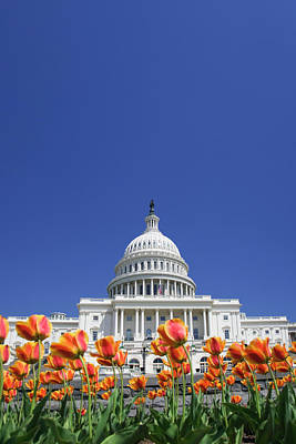 Capitol Building Wall Art - Photograph - Usa, Washington Dc by Jaynes Gallery