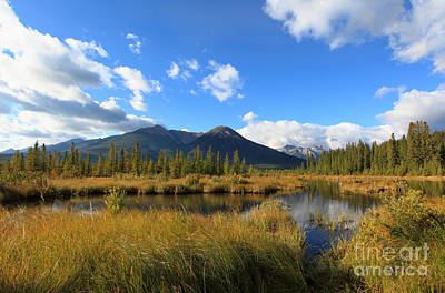 Photograph - Vermillion Lakes Banff Alberta by Nick Jene