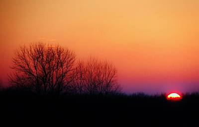 Dark Woods At Sunset Photograph - Sunset Hues by Victoria Fischer