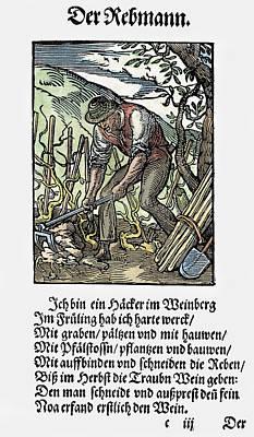 Winemaking Painting - Vinegrower, 1568 by Granger