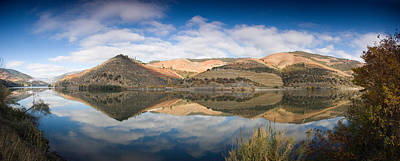Winemaking Photograph - Vineyards At The Riverside, Cima Corgo by Panoramic Images