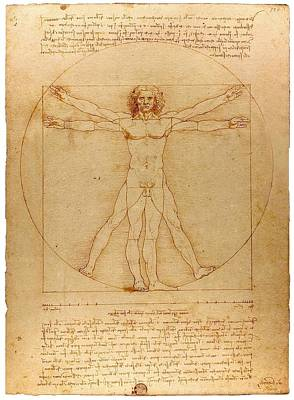Vitruvian Man Art Print by Leonardo da Vinci