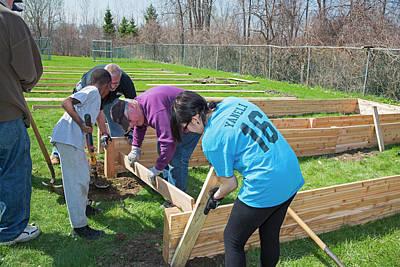 Volunteers Building Raised Beds Art Print by Jim West