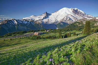 Steamboat Photograph - Wa, Mount Rainier National Park, Mount by Jamie and Judy Wild