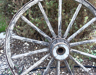Art Print featuring the photograph Wagon Wheel Study 2 by Sylvia Thornton