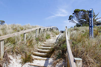 Walkway To Beach Art Print by Les Cunliffe