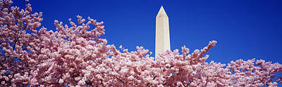 Washington Monument Washington Dc Art Print by Panoramic Images