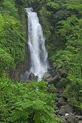 Photograph - Waterfall In Dominica by Willie Harper