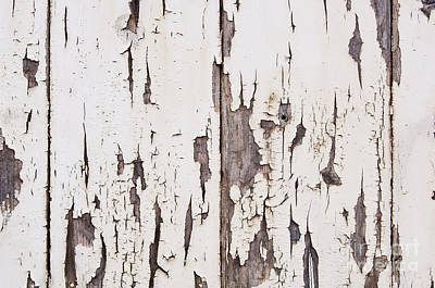 Weathered Wood Photograph - Weathered Paint On Wood by Tim Hester
