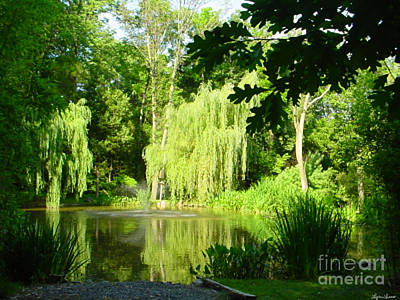 Art Print featuring the photograph Weeping Willow Pond by Lyric Lucas