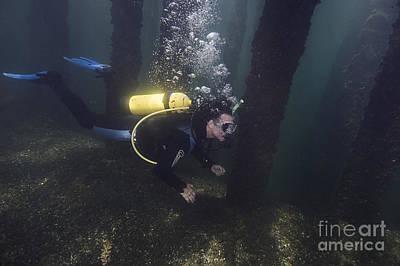 Photograph - Welland Train Bridge Dive by JT Lewis