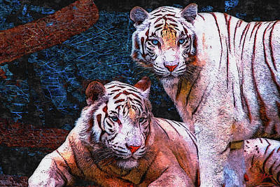 White Tiger Mixed Media - White Tigers by Dancin Artworks