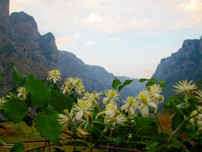 Photograph - Wild Flowers And Mountains by Alexandros Daskalakis